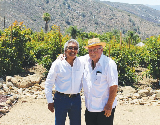 "Ernesto Veloz and Joe Ellis of Ellis Farms. Switching over from palms to avocados has been ""a labor of love."""