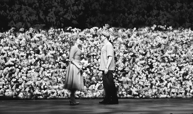 Will Bloom and his future wife meet amidst a field of daffodils.