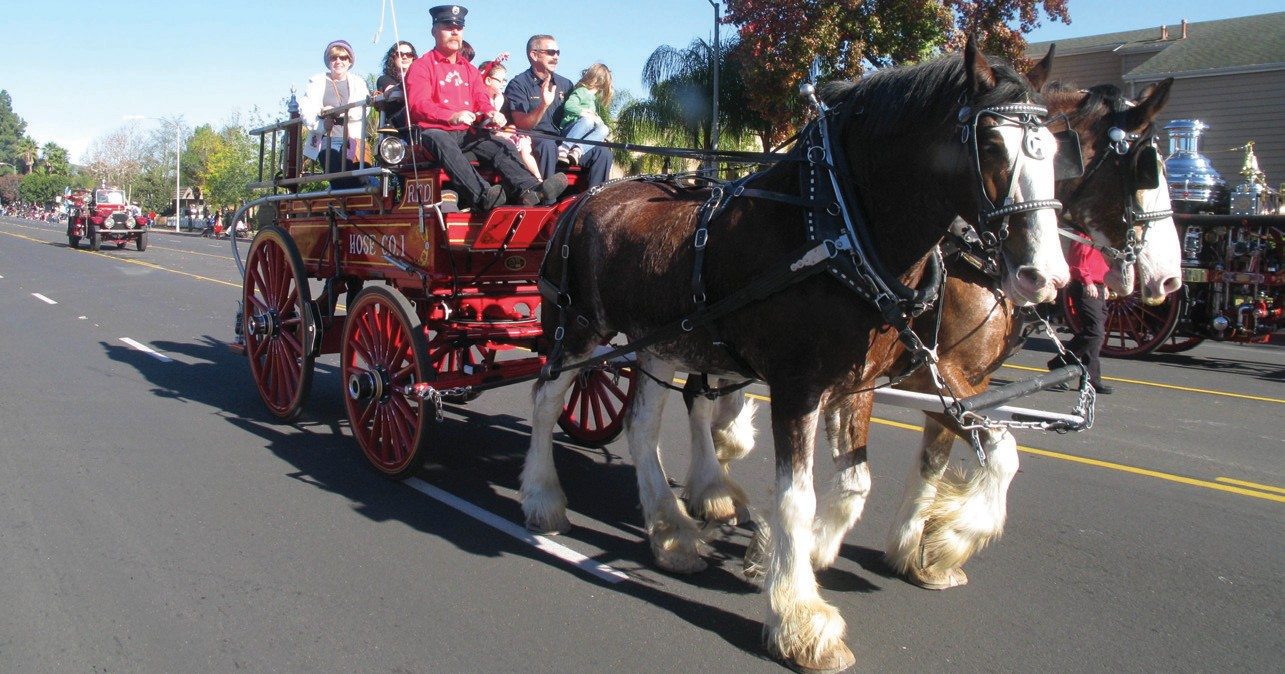 Members of the California State Firefighters Association brought out fantastic, vintage fire engines drawn by huge Clydesdale draft horses.