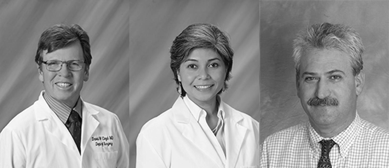 2016 Doctors of the Year are, from left, David Cloyd, M.D., Palomar Medical Center General Surgery; Badain Helvind, M.D., Pomerado Hospital Behavioral Health; Keyvan Esmaeli, M.D., Palomar Health Downtown Campus, Acute Rehabilitation.