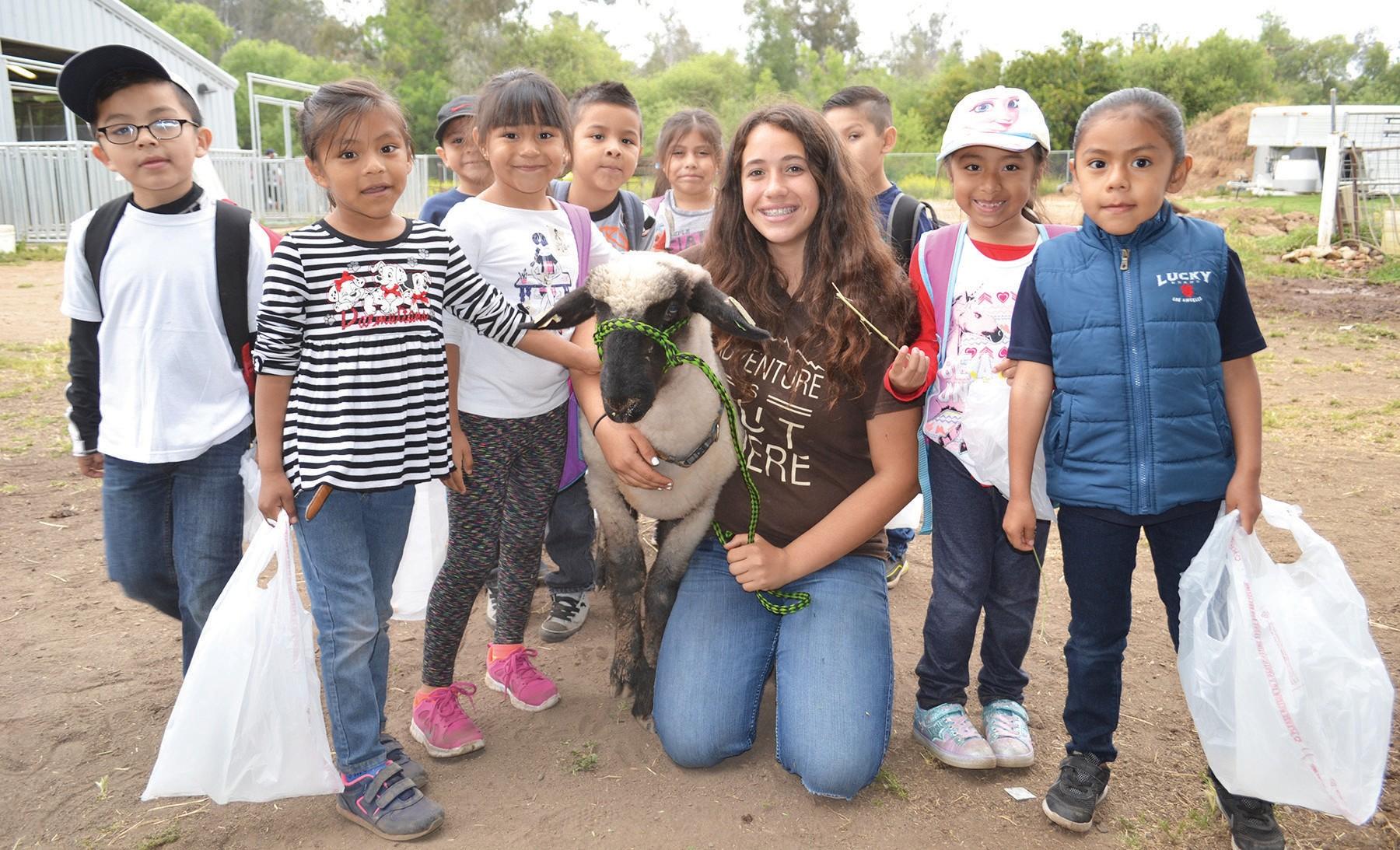 Sierra Takacs, sophomore, showing elementary school students her lamb, Marley.