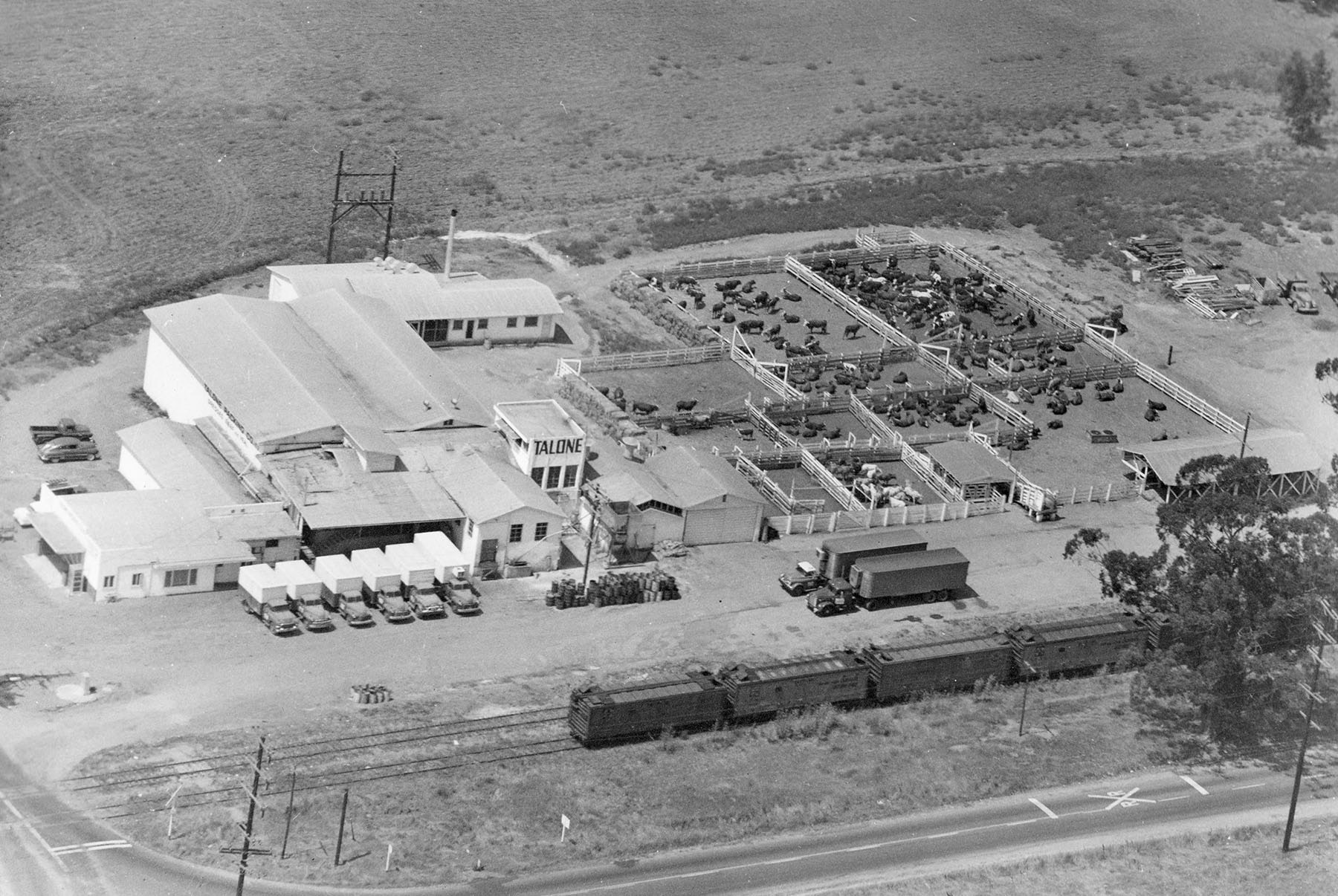 The Talone meat factory in 1950. Photo courtesy of the Escondido History Center.