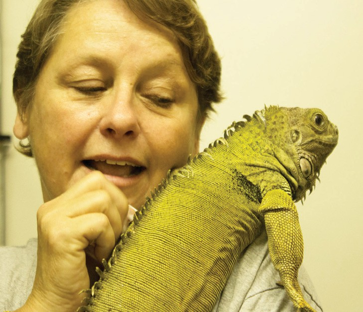 A friendly iguana with the EcoVi­varium's Director Susan Nowicke. Each animal is considered an ambassador of education for its species. Photos by Anne S. Hall