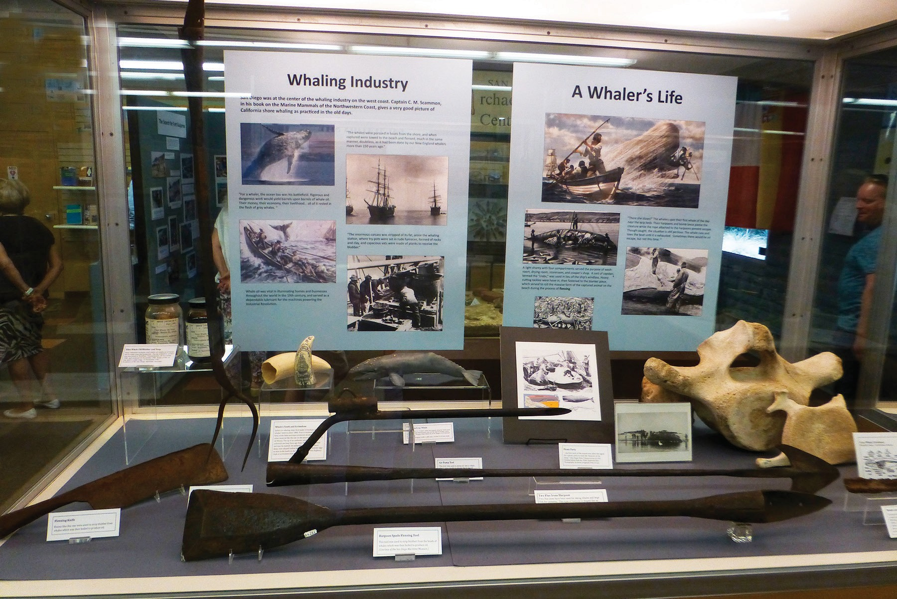 A case of artifacts from the whaling industry. San Diego supported a strong community of whalers in the heyday of that era.