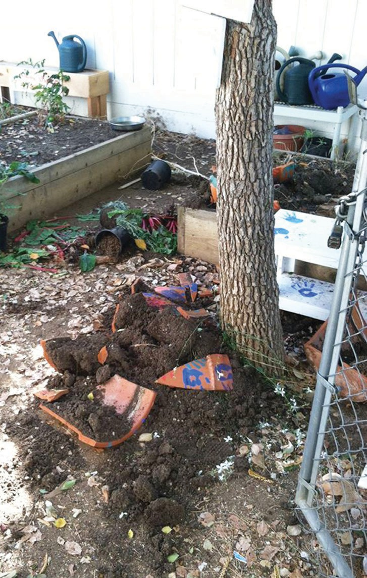 Photo shows the vandalism that was done over the weekend to the Conway Elementary School's children's garden.