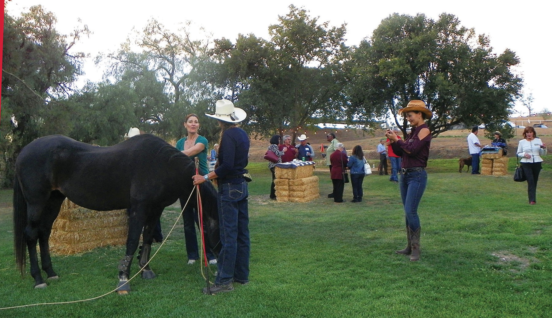 Sue Stiver (center) tells Autumn Dinh (left) of Arthur Murray Dance Studio that Chica (horse) is 32 years old, and the oldest horse on the property.